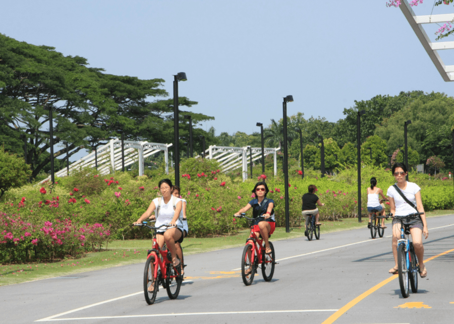 Things to do in East Coast Park | Cycle your way through the park
