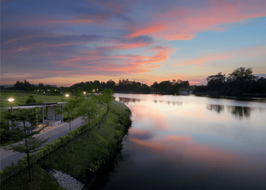 Running trails in Singapore | Punggol Park Connector