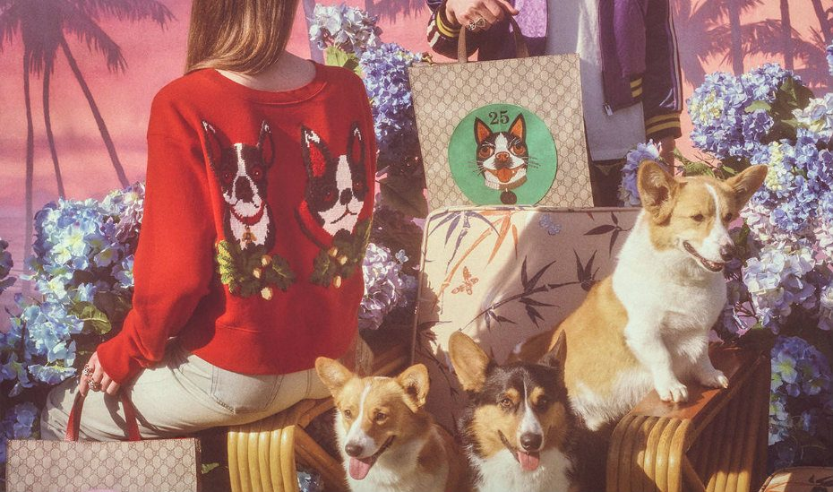 Gucci | Dog prints to subtle CNY style: fashion trends for Chinese New Year