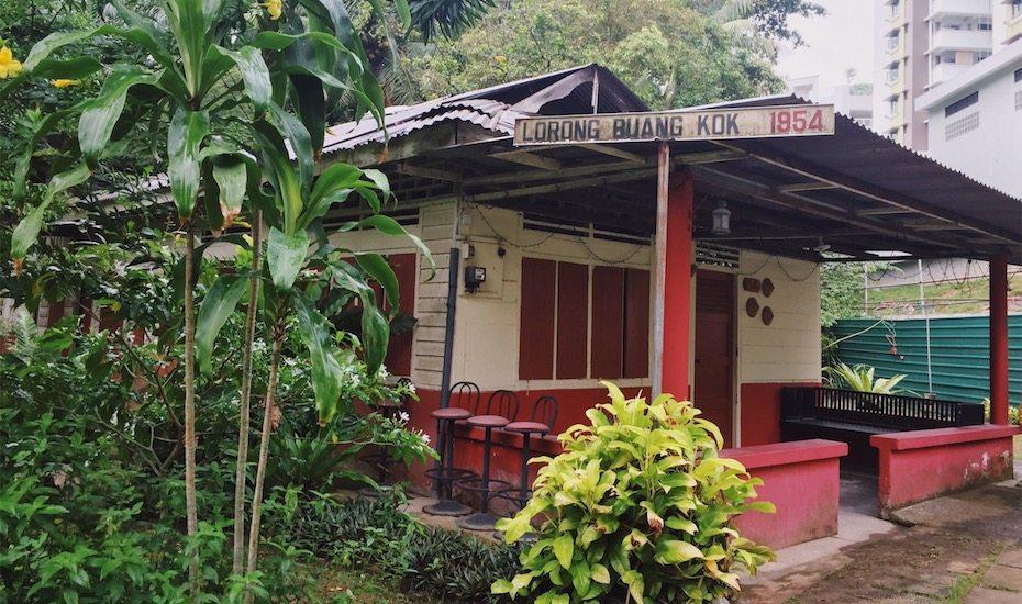 Singapore secrets: A nostalgic stroll through Kampong Lorong Buangkok