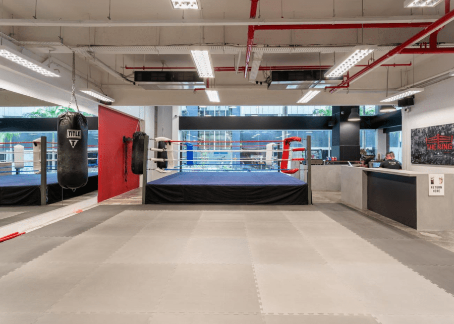 the ring | martial arts singapore