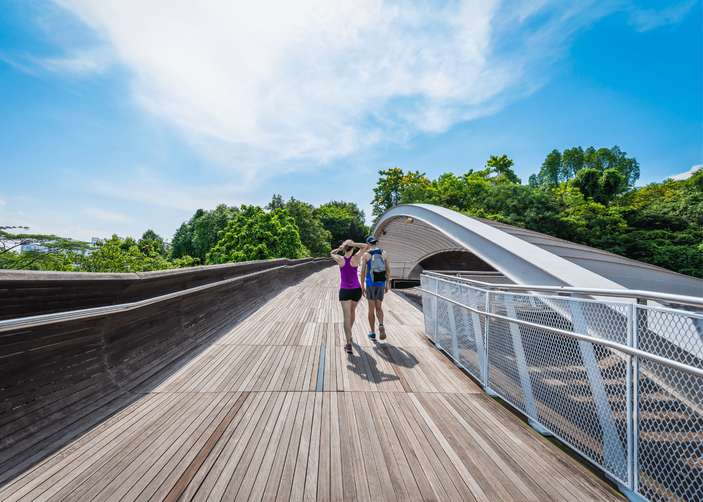 Hiking in Singapore: Henderson waves