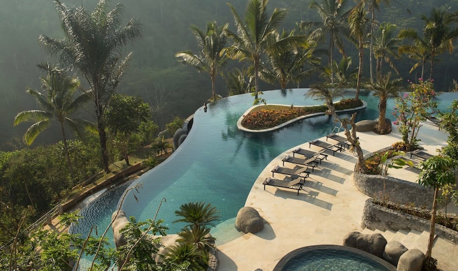 The jungle infinity pool at Padma Resort Ubud in Bali, Indonesia