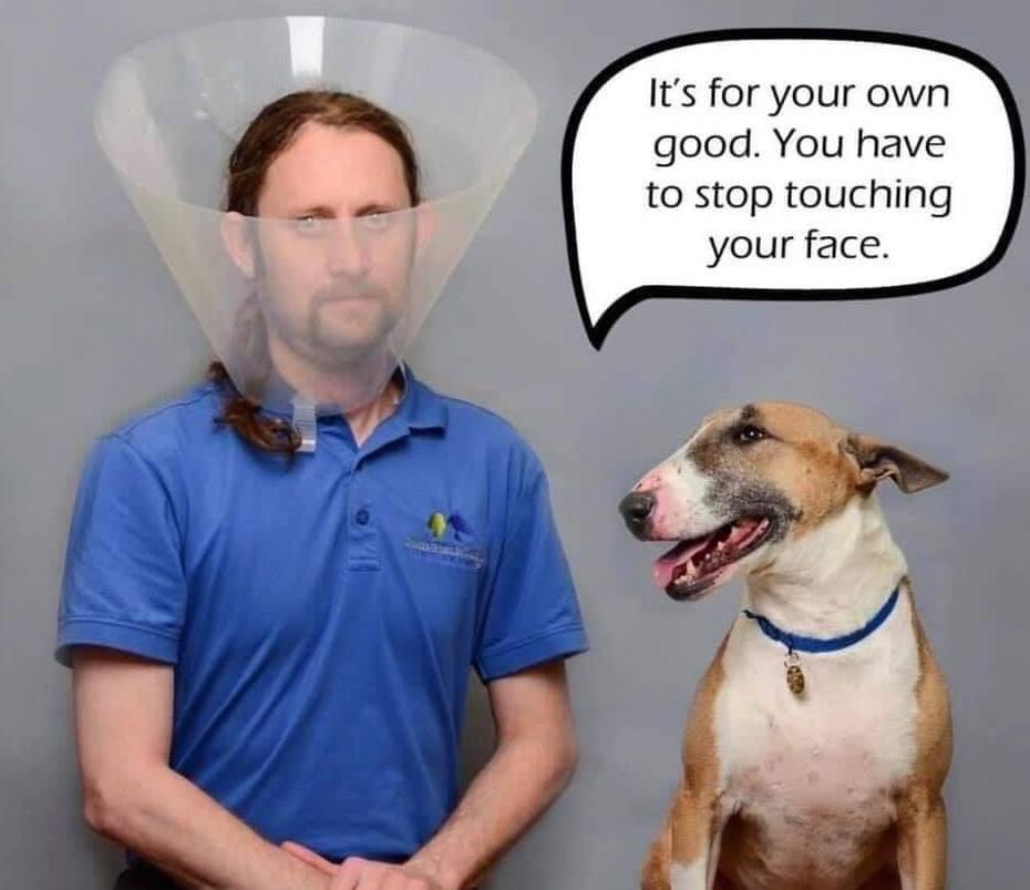 35 Funny Coronavirus Memes To Lighten The Mood Honeycombers Bali