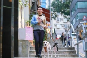 Dogs of Hong Kong: Wan Chai whippets Wagyu and Walnut talk favourite dog parks and fashion