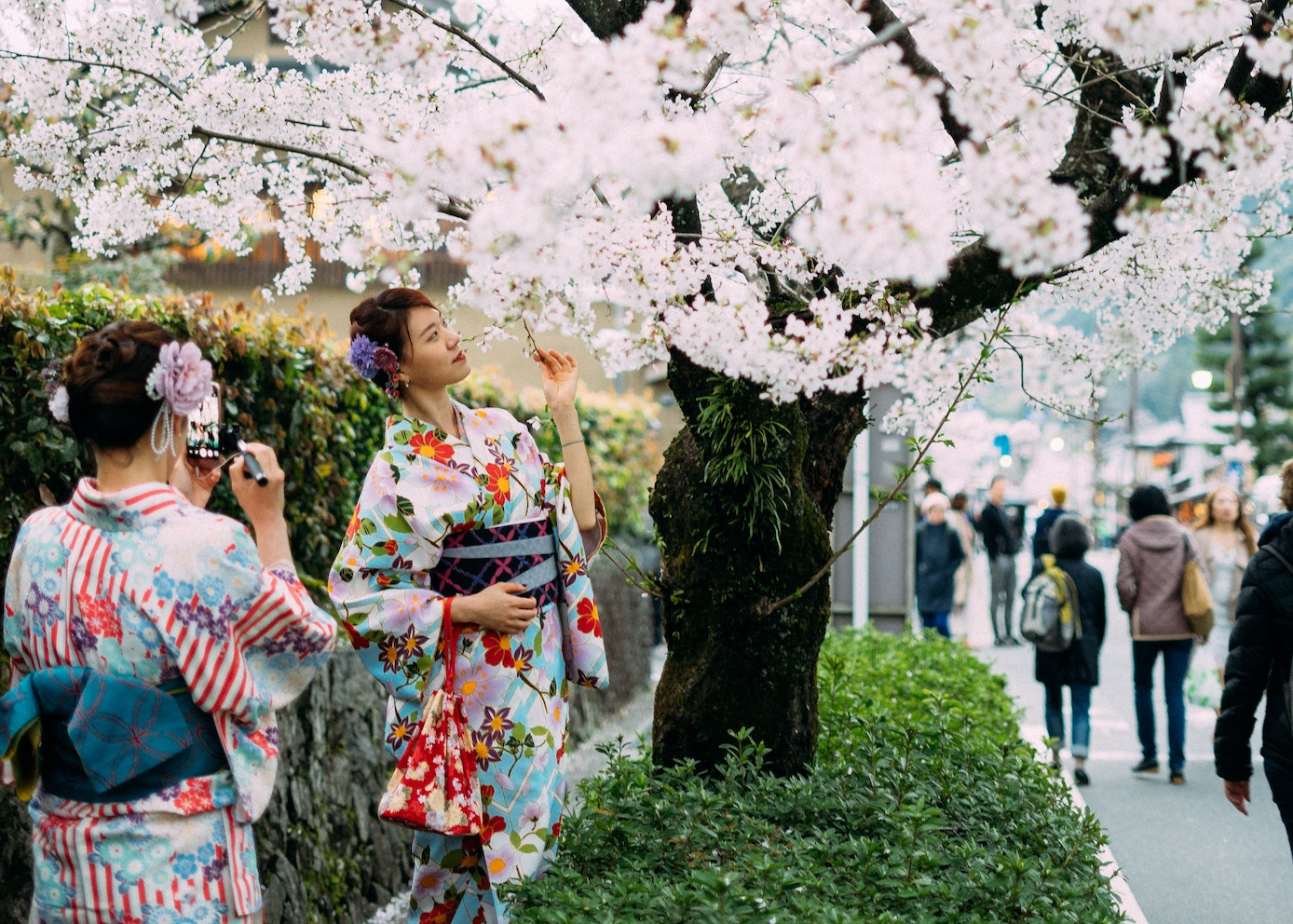 when is the best time to travel to Japan spring